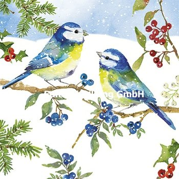 Carola Pabst Postcard Christmas | Blue tits in the snow