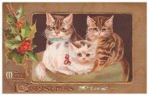 Postcard   Drie katjes (Merry christmas)