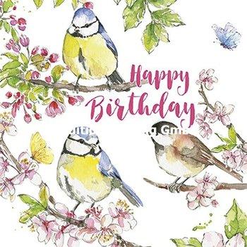 Carola Pabst Postcard | Happy Birthday (Birds)