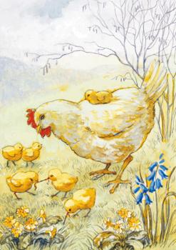 Postcard Eileen Chandler | Hen and Chicks