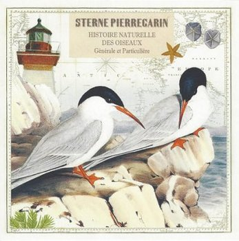 Gwenaëlle Trolez Créations Square Postcard   Sterne Pierregarin