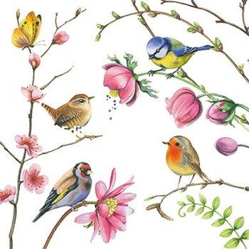 Nina Chen Postcard   Flowers and birds