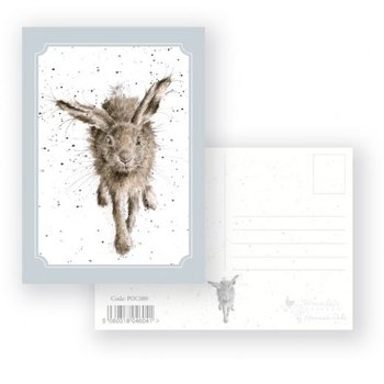 Wrendale Designs 'Little Grey Hare' Postcard