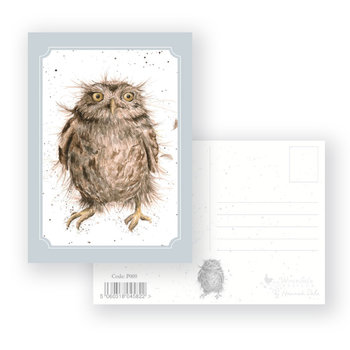 Wrendale Designs 'What A Hoot' Postcard