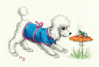 Postcard Molly Brett | Poodle looking at a grashopper on a toadstool