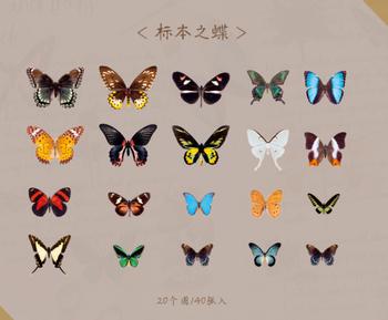 Sticker Flakes | Specimen Butterfly
