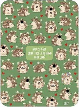 Lali Riddle Search Postcard | Egels
