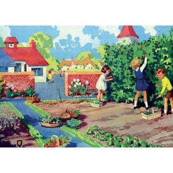 Postcard | The School Vegetable Garden