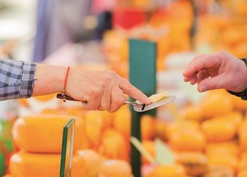 The Dutch Connection Postcard | Gouda Cheese
