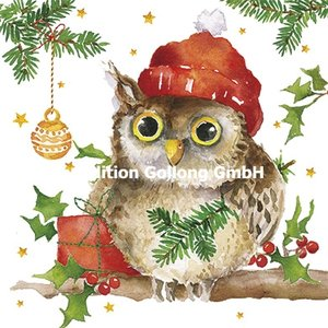 Carola Pabst Postcard Christmas | Owl
