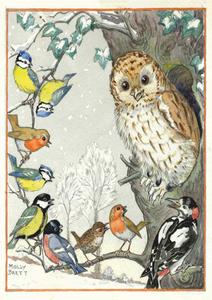 Postcard Molly Brett | An owl and other birds