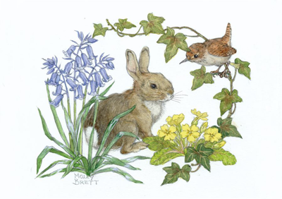 Postcard Molly Brett | Rabbit and wren with bluebells and primroses