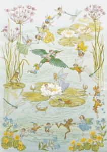 Postcard Molly Brett   Fairies and Waterlilies