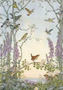 Postcard Molly Brett | Dawn Chorus