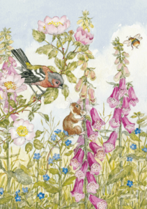 Postcard Molly Brett   Chaffinch Field Mouse, Foxgloves and Bee