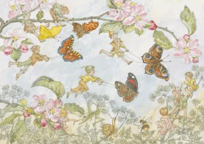 Postcard Molly Brett   The Butterfly Race