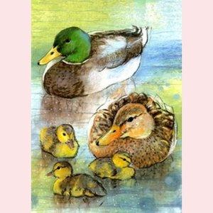 Postcard Loes Botman | Weet je wat de dieren zeggen 7 - Familie eend