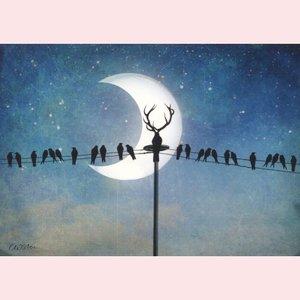Postcard Catrin Welz-Stein - Halloween
