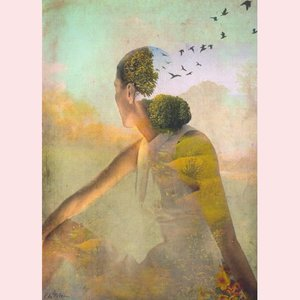 Postcard Catrin Welz-Stein - Summerdream