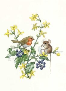 Postcard Molly Brett | Mouse sitting on winter jasmine sketching robin