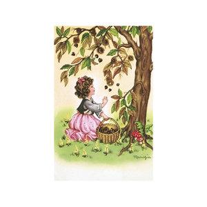 Postcard Ludom | Picking Nuts