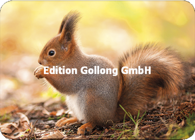 Adobe Stock - Youlaangel Postcard | Squirrel