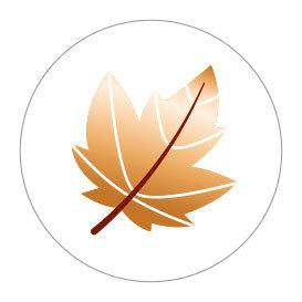 5 Stickers | Leaf (Gold Foil)