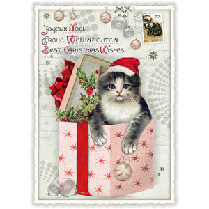 Postcard Edition Tausendschoen Christmas - Cat in Box