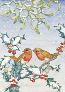 Postcard Molly Brett | Robins With Mistletoe And Holly
