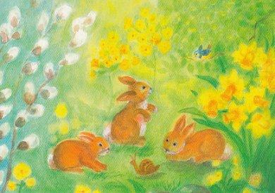 Postcard Dorothea Schmidt - 3 Bunnies