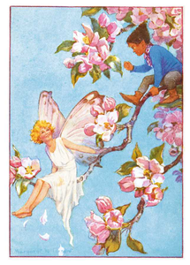 Postcard Margareth W. Tarrant | Apple Blossom
