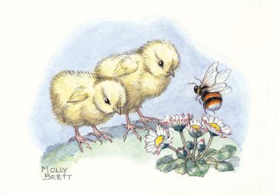Postcard Molly Brett | Two Chicks Meet A Bee