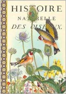 Illustrated notebook Gwenaëlle Trolez Créations - Oiseaux d'Europe