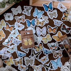 Sticker Flakes Box | A brief history of butterflies