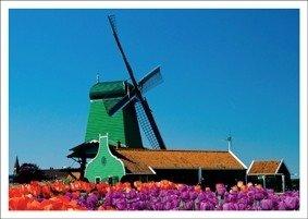Postcard Kiek   Green Windmill