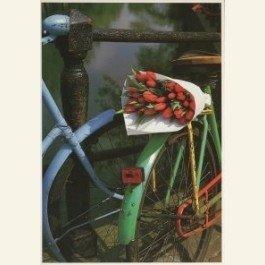 Postcard | Tulpen uit Amsterdam