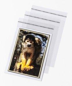 10 Postcard Bags | 118x163mm
