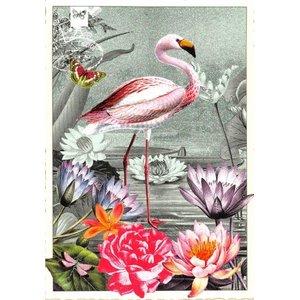 Postcard Edition Tausendschoen | Adriana Sanmartin Flamingo