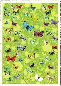 Postcard Edition Tausendschoen | Adriana Sanmartin Butterflies