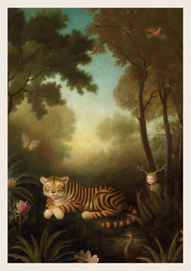 Sleeping Tiger Postcard by Stephen Mackey