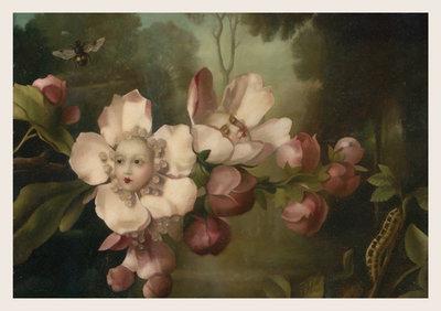Sleepless Blossom Postcard by Stephen Mackey
