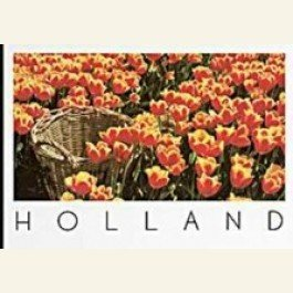 Art Unlimited Postcard | Igno Cuypers - Tulip Basket