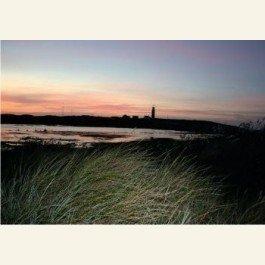 Postcard | De vuurtoren van Texel in oktober 2008