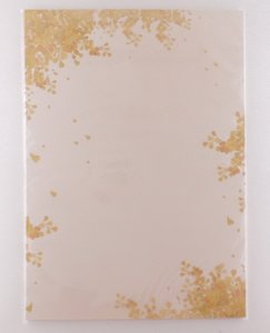 A4 Colourful Paper Amy and Tim | Golden Cassia fistula