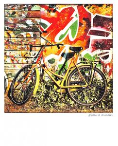 Pola Holland Postcard | Amsterdamse fiets