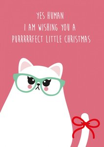 Studio Inktvis Postcard | Perfect Little Christmas Grumpy Cat