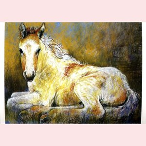 Postcard Loes Botman | Lying colt