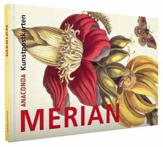 Anaconda Art Postcard Book   Merian