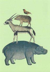 Museum Cards Postcard | Robert Jacob Gordon