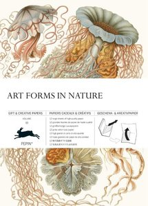 Pepin Press - Gift and Creative Paper Book | Art Forms in Nature